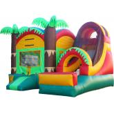Commercial Inflatable Combo 3020