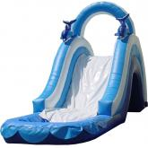 Inflatable Water Slide 2005